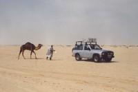 Tunizija 1999