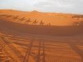 Maroko_2016_49