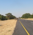 Namibija_14_25