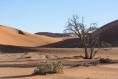 Namibija_14_45