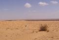 pula-afrika-2002-27