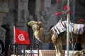 Tunis_april_2016_31